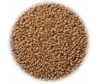 Солод копченый ячменный Cookie Malt EBC 40-70 (Viking Malt) 1 кг
